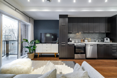 240 rue Murray apt 201, Griffintown, Montreal
