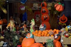 Pumpkins_23