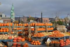 Pumpkins_18